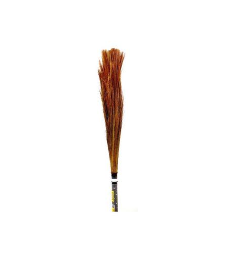 Indian Broom - Jharoo